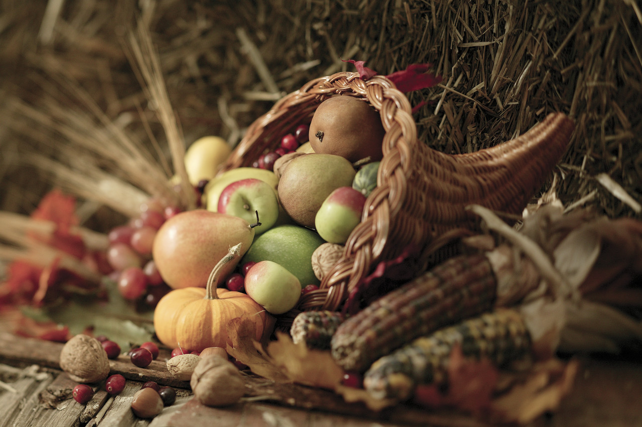 Why #Thanksgiving Is My Favorite Holiday