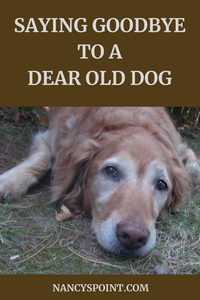Saying Goodbye to a Dear Old Dog
