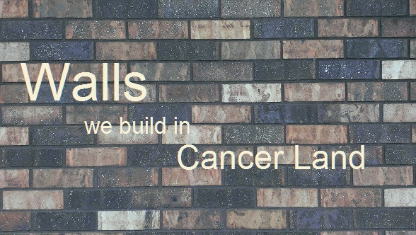 Walls We Build In Cancer Land #cancer #metastaticbreastcancer