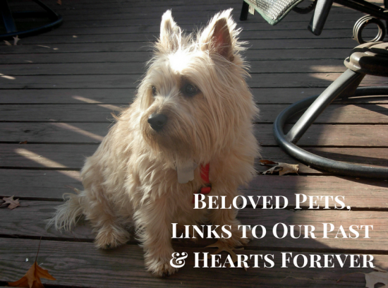 Beloved Pets, Links to Our Past & Hearts Forever