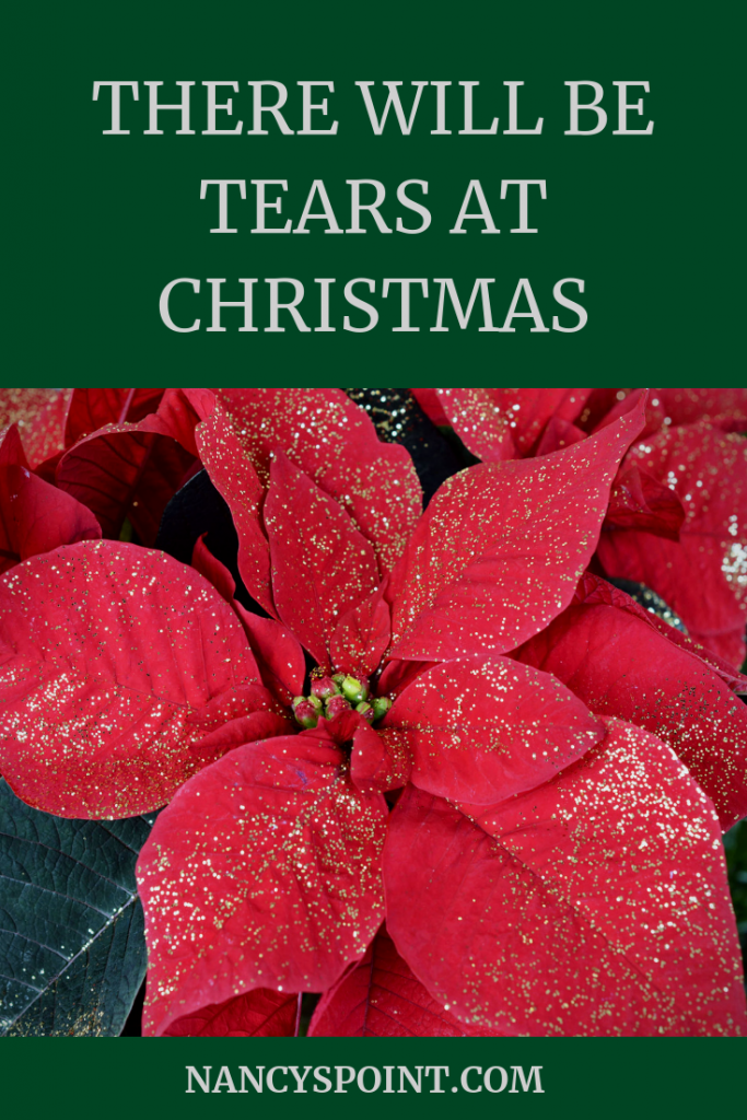 There Will Be Tears at Christmas & that's Okay #grief #loss #christmas #holidays #family