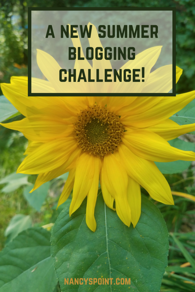 A Summer Blogging Challenge!