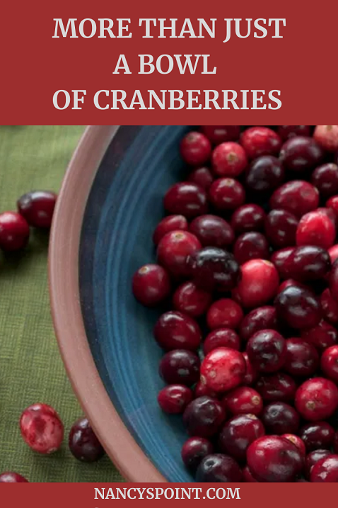 More than Just a Bowl of #Cranberries #Thanksgiving #family #holidays #grief #holidayfoods