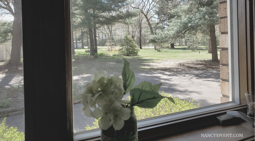 View from my #kitchen sink: No, you're not doing #stayhome (or #cancer) wrong #breastcancer #covid19 #pandemic #family #mothersinlaw #thissucks